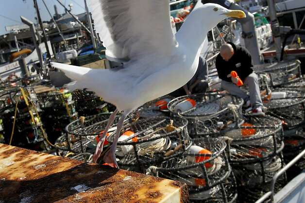 Commercial Crab Fishing Boats For Sale In California